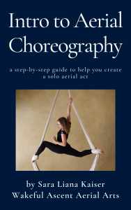 aerial-choreography-book