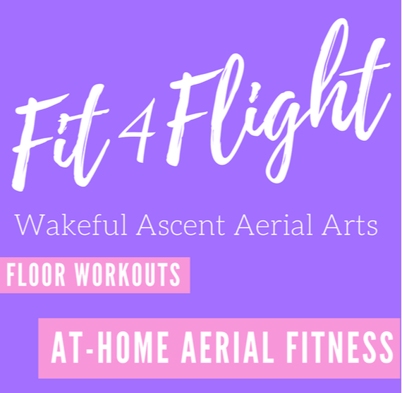 aerial-conditioning-at-home