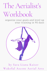 Aerialist's Workbook