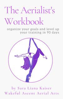 aerialists-workbook