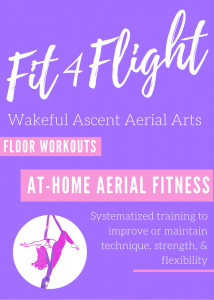 fit4flight-aerial-fitness-training-home-workouts