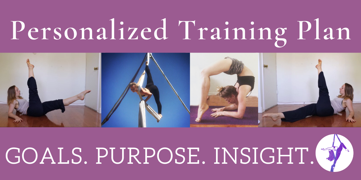 Define & Reach your Goals with Custom Training Plans: Aerial Arts, Floor Conditioning, & Flexibility