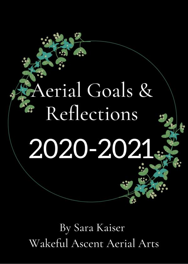 aerial-goals