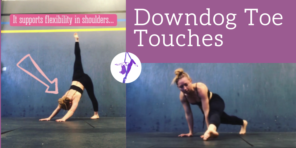 Downdog Toe Touches for Flexibility & Core Strength