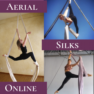 Aerial Silks Online Monthly Membership