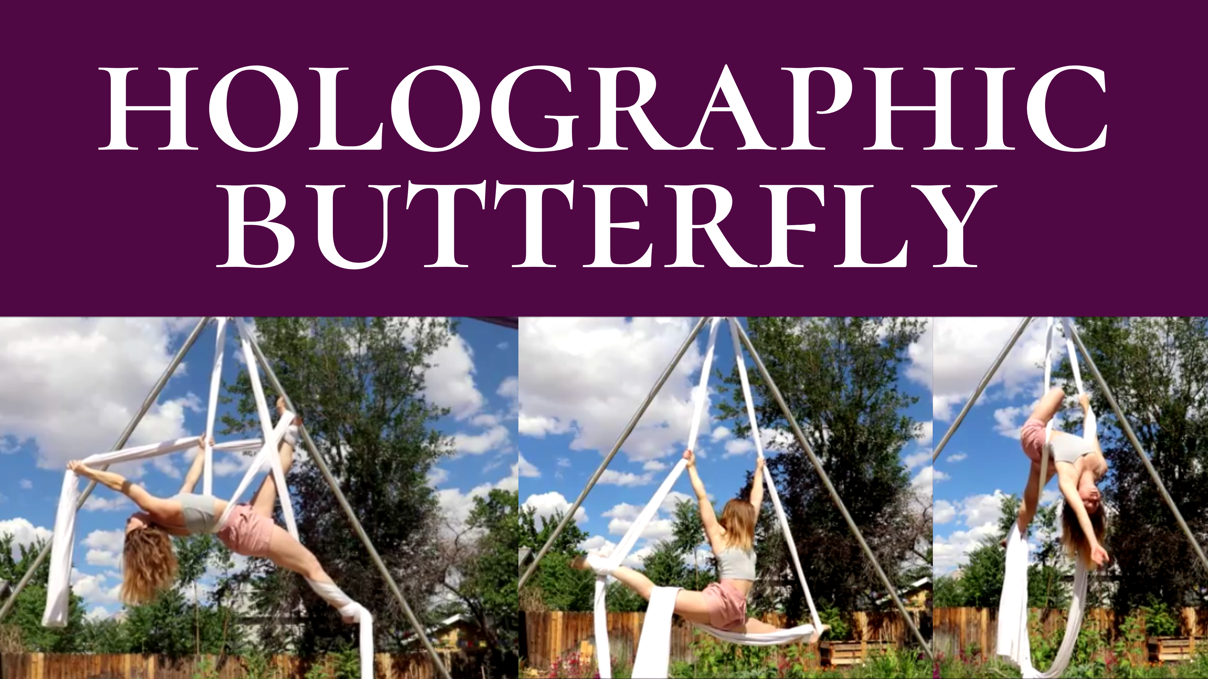 Holographic Butterfly – A Creation Story